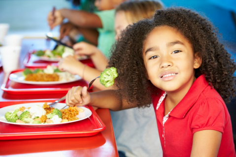 Setting a Healthy Eating Manner for Preschoolers